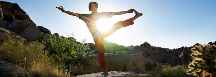 nature-of-yoga